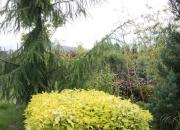 zahradnictvi_14