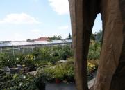 zahradnictvi_19