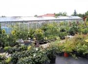 zahradnictvi_20