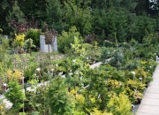 zahradnictvi_26
