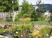 zahradnictvi_33