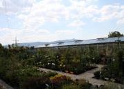 zahradnictvi_34