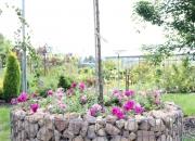 zahradnictvi_38