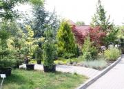 zahradnictvi_39