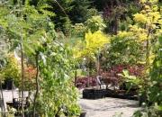 zahradnictvi_44
